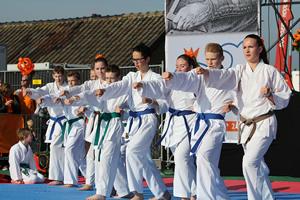 karatekidssambonsportskoningsdagdemo