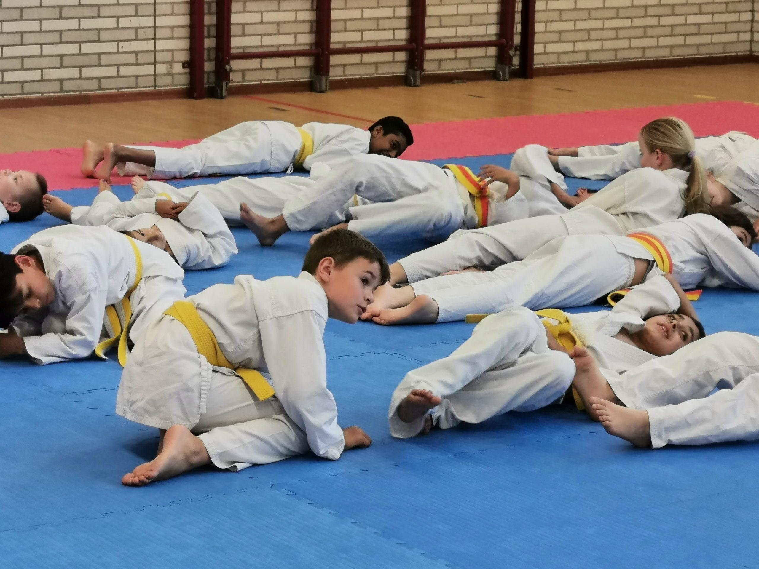 kids karate vloer
